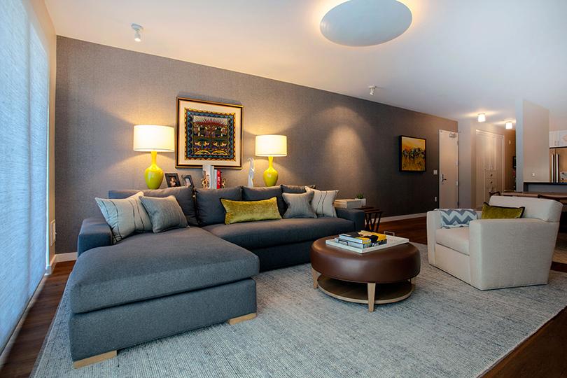 Dog Patch condominium interior design