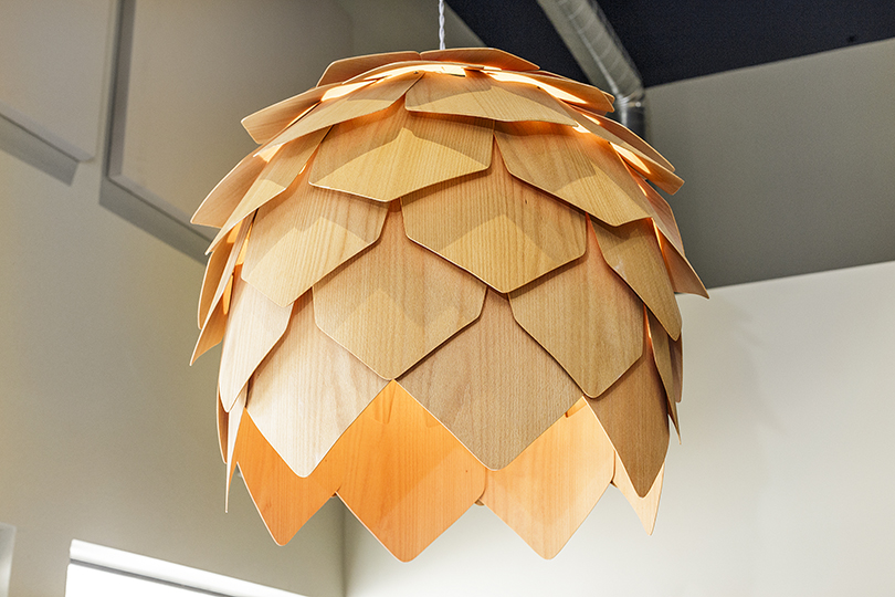 Pine Cone Lamp in Entry